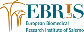 www.ebris.eu Logo